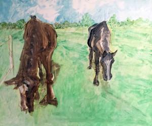 Pferde Martina